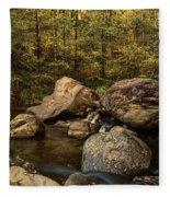 Autumn On The Creek  Fleece Blanket