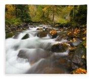 Autumn Passages Fleece Blanket