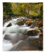 Autumn Passages Fleece Blanket