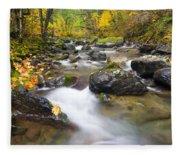 Autumn Passing Fleece Blanket