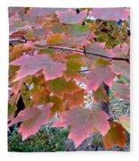 Autumn Pink 2 Fleece Blanket