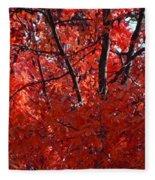 Autumn Red Trees 2015 Fleece Blanket