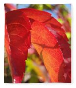 Autumn Reds Fleece Blanket