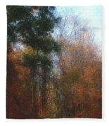 Autumn Scene 10-23-09 Fleece Blanket