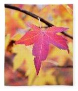Autumn Still Fleece Blanket