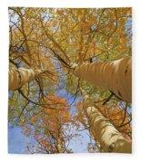 Autumn Straight Up Fleece Blanket