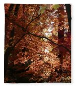Autumn Sunshine Poster Fleece Blanket