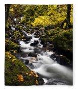 Autumn Swirl Fleece Blanket