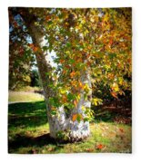 Autumn Sycamore Tree Fleece Blanket