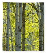 Autumn Through The Trees Fleece Blanket