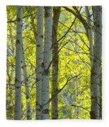 Autumn Through The Trees Fleece Blanket