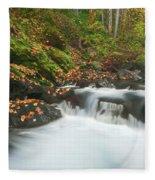 Autumn Treasure Fleece Blanket