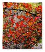 Autumn Trees Rock City Fleece Blanket