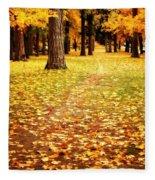 Autumn Walk In Spokane Fleece Blanket