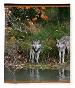 Autumn Wolf Study  Fleece Blanket