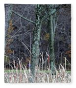 Autumn Woods Fleece Blanket