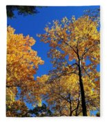 Autumn Yellow Foliage On Tall Trees Against A Blue Sky In Palermo Fleece Blanket