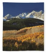 Autumnal View Of Aspen Trees And The Fleece Blanket