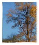 Autumn's Gold  - No 2 Fleece Blanket
