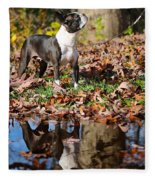 Autumn's Reflection Fleece Blanket