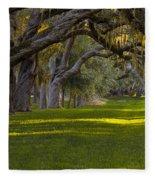 Avenue Of Oaks 2 St Simons Island Ga Fleece Blanket