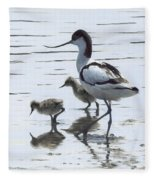Avocet And Chicks Fleece Blanket