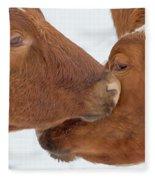 Ayrshire Affection Fleece Blanket