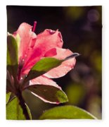 Azalea 2 Fleece Blanket