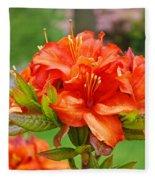 Azaleas Art Home Decor 14 Orange Azalea Flowers Art Prints Greeting Cards Fleece Blanket