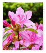 Azaleas Pink Azalea Flowers Artwork 12 Landscape Art Prints Fleece Blanket