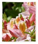 Azaleas Pink Orange Yellow Azalea Flowers 6 Summer Flowers Art Prints Baslee Troutman Fleece Blanket