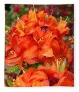 Azaleas Rhodies Art Prints Azalea Flowers Giclee Baslee Troutman Fleece Blanket