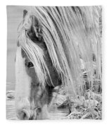 B/w Mustang Fleece Blanket