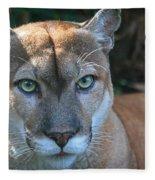 Babcock Wilderness Ranch - Oceola The Panther Pleasantly Peering Fleece Blanket