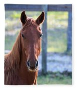 Babcock Wilderness Ranch - Red Horse Portait Fleece Blanket