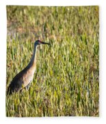 Babcock Wilderness Ranch - Sandhill Crane Fleece Blanket