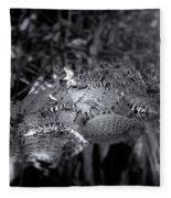 Baby Alligators On Board Fleece Blanket
