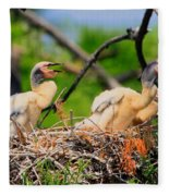Baby Anhinga Chicks Fleece Blanket