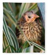 Baby Bird Hiding In Grass Fleece Blanket