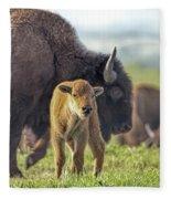 Baby Bison Fleece Blanket