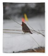 Baby Cardinal  Fleece Blanket