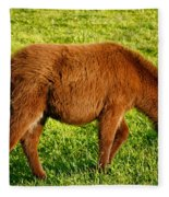 Baby Donkey Fleece Blanket