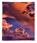 Baby Dragon's Fledgling Flight Fleece Blanket