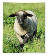 Baby Ewe Fleece Blanket