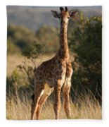 Baby Giraffe Fleece Blanket