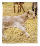 Baby Goat On The Run Fleece Blanket