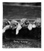 Baby Lions, C1900 Fleece Blanket