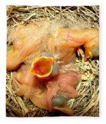 Baby Robins Newly Hatched Fleece Blanket