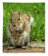 Baby Squirrel's First Peanut Fleece Blanket