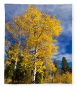 Back Road Beauty Fleece Blanket